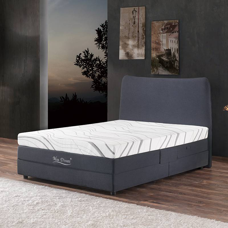 Home Furniture Adjustable Electric Bed F02#