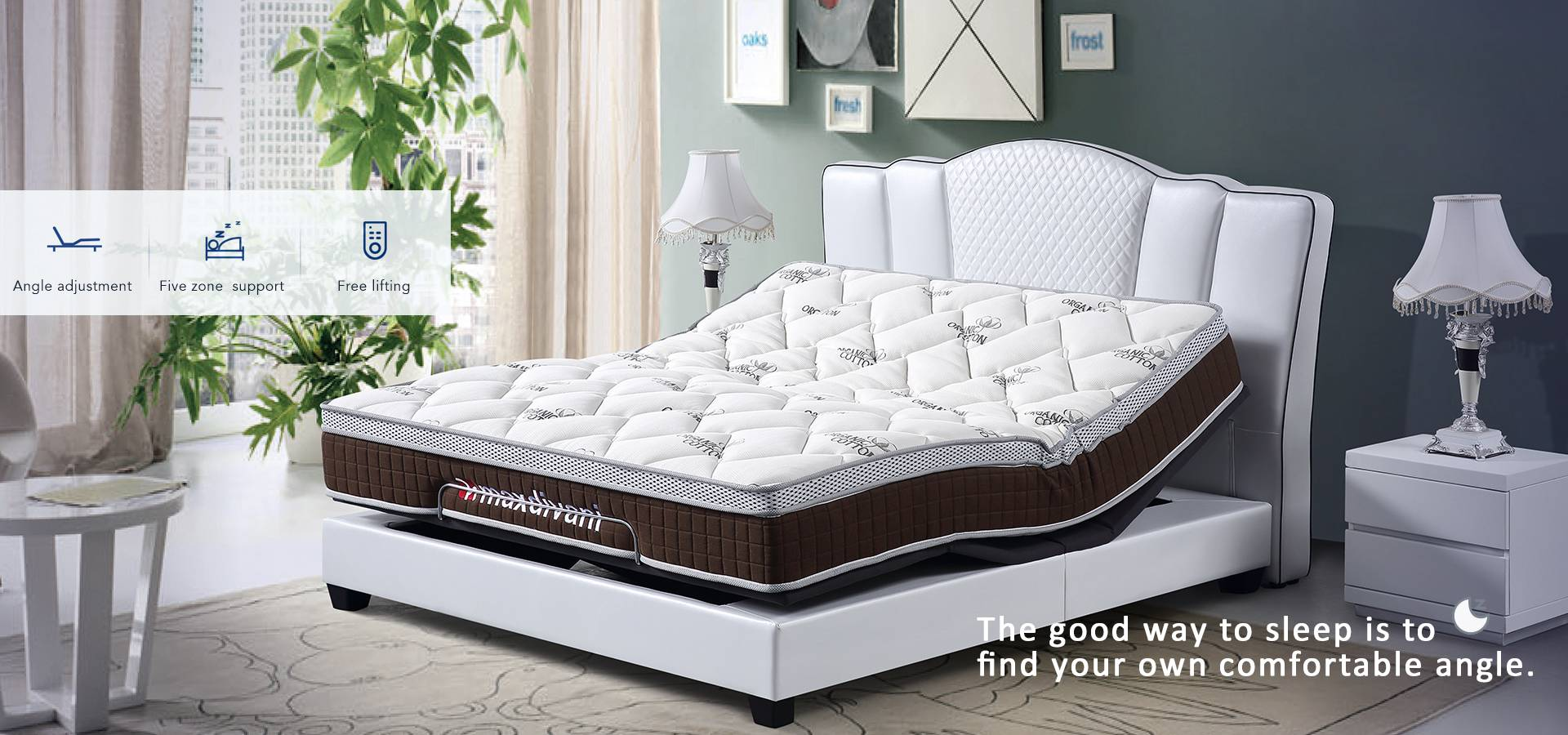gas lift bed wholesale and electric adjustable bed OEM
